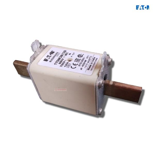 170M3813D fuse